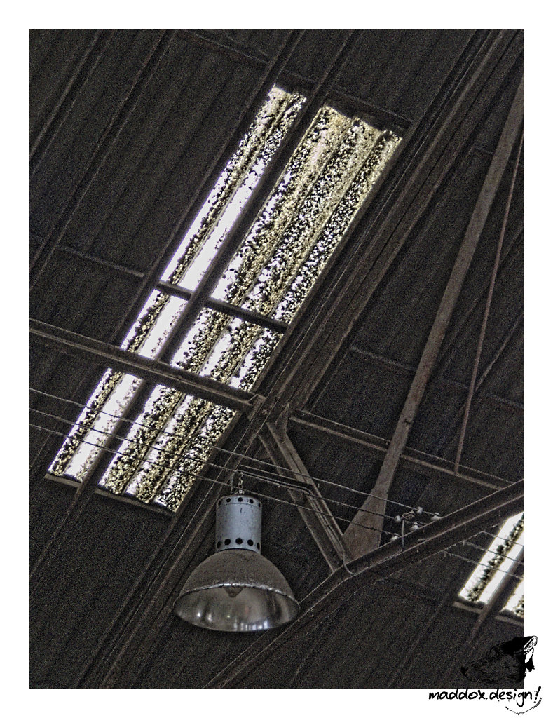 2008-1116-130012.jpg